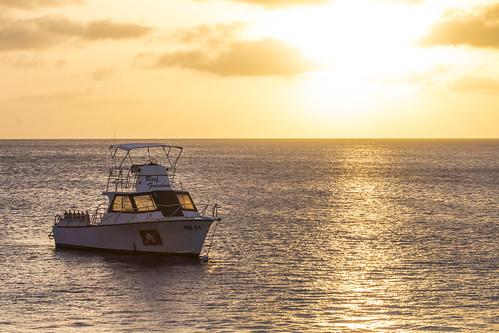 bonaire bonairesinteustatiusandsaba caribbean color diverdoug marine ocean reef sea sunset