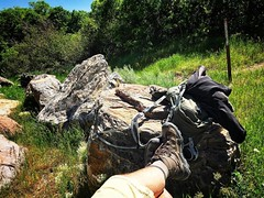 Another great afternoon in the #Wasatch. Short #hike to Dry Canyon trailhead. #Utah #summer2017 #nature #outdoors #getoutside #vitamind #stressrelief #naturesplayground