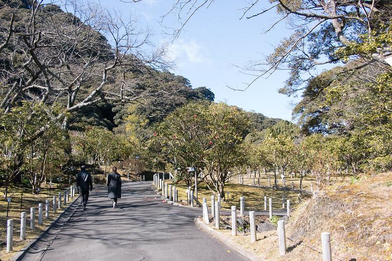 20170211-三原山(伊豆大島)_0918.jpg