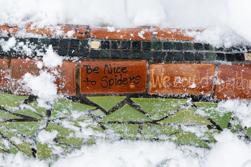A piece of art says 'Be Nice to Spiders'