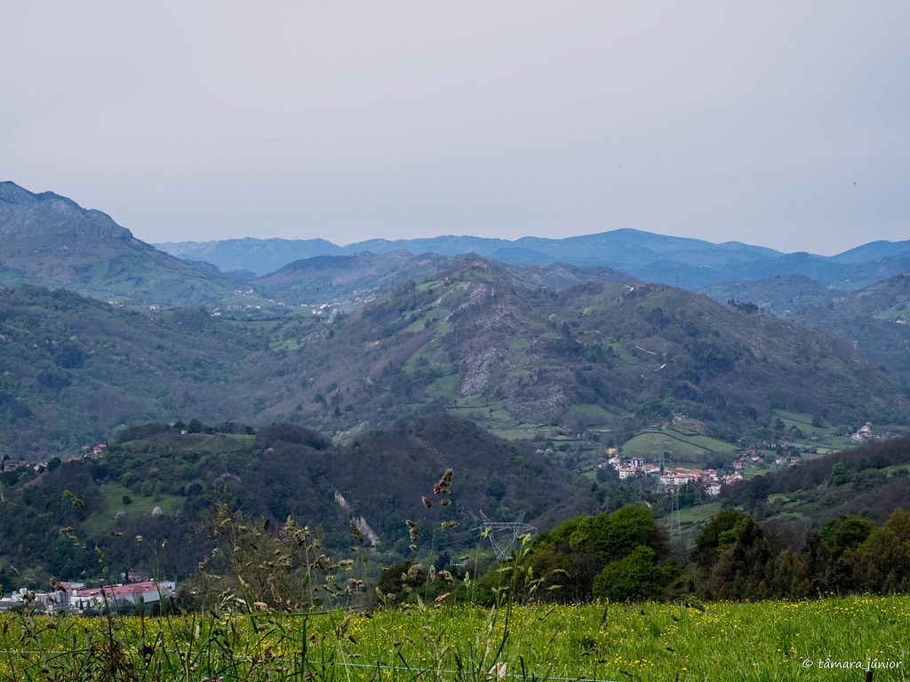 29.- Camino del Salvador-8ª etapa (277)