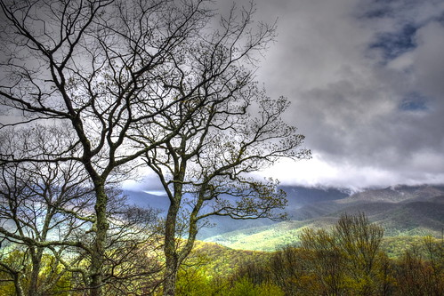brp blueridgeparkway haywoodcounty northcarolina nature landscape trees silhouette mountains clouds sky outdoors
