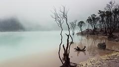 kawah putih crater lake java, Indonesia
