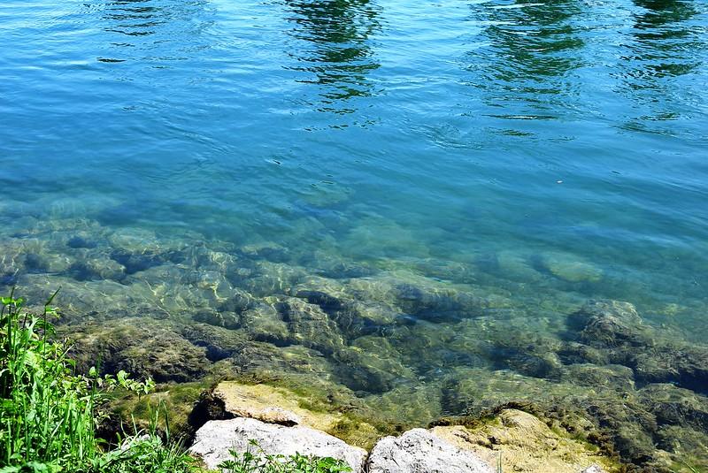 River Aar 16.05 (1)