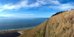 the bluff trail at Ebey's Landing