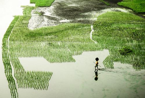 Work for life por Ehsanul Siddiq Aranya