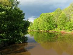 muddy river2