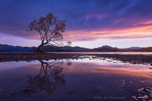 Good morning, New Zealand, Nikon D810, AF-S Zoom-Nikkor 14-24mm f/2.8G ED