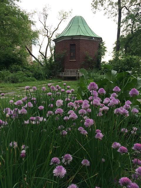 Secret Garden Definition Meaning