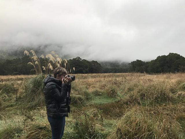 Anto captures NZ