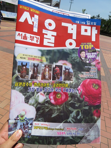釜山慶南競馬場の競馬新聞