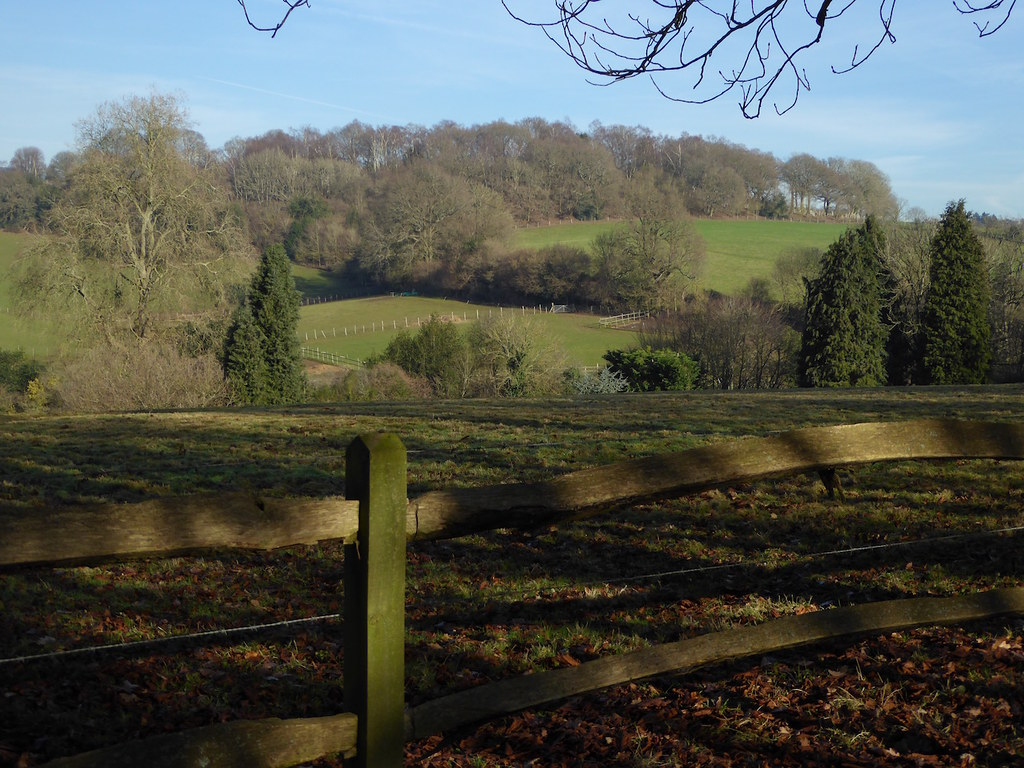 Towards the end Holmwood to Shamley Green walk