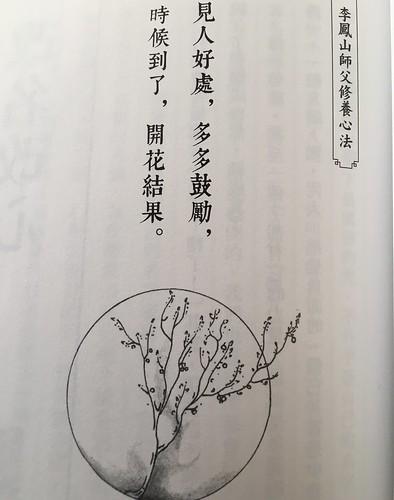 李鳳山師父的書