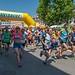 NKT Půlmaraton 2017