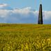 Bilsington Obelisk
