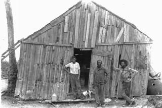 Charcoal burners hut - Big Pine Key