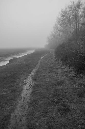 maine spring wells wellsharbor fog morning webhannetriver bw monochrome saltmarsh