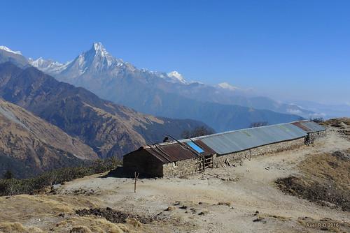 bâtiment himalchuli lamjunghimal machhapuchhre montagnes muldhai nepal