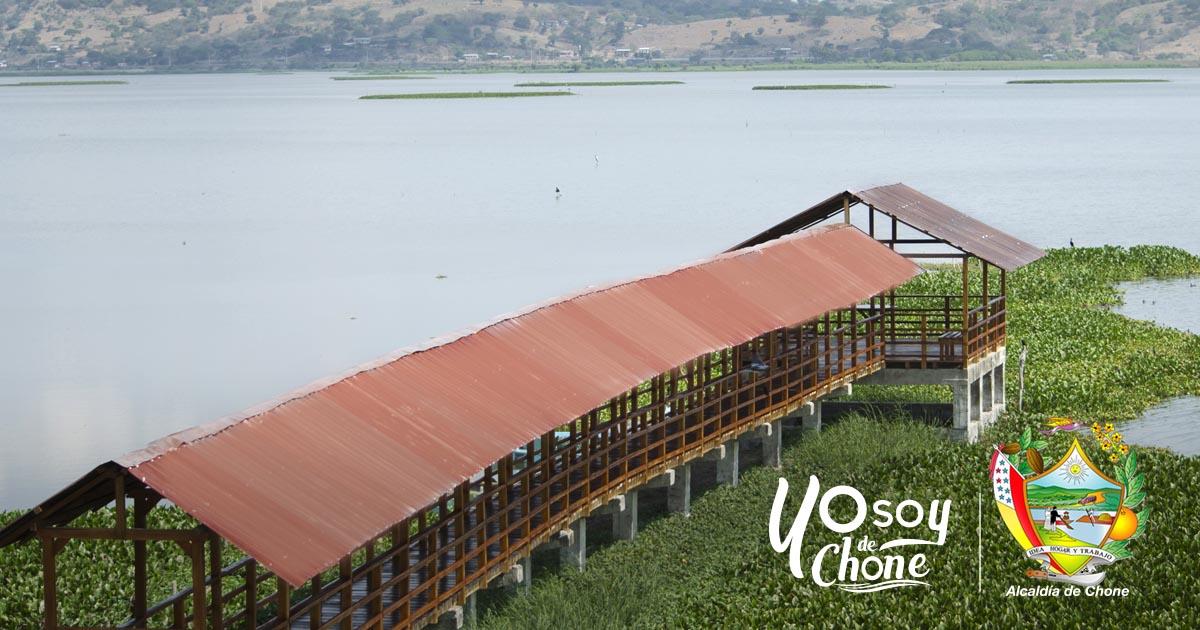 Alcaldía de Chone apoya actividad en Humedal La Segua
