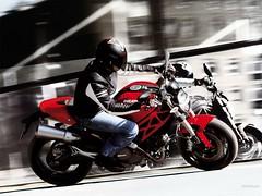 Ducati 696 MONSTER 2008 - 30