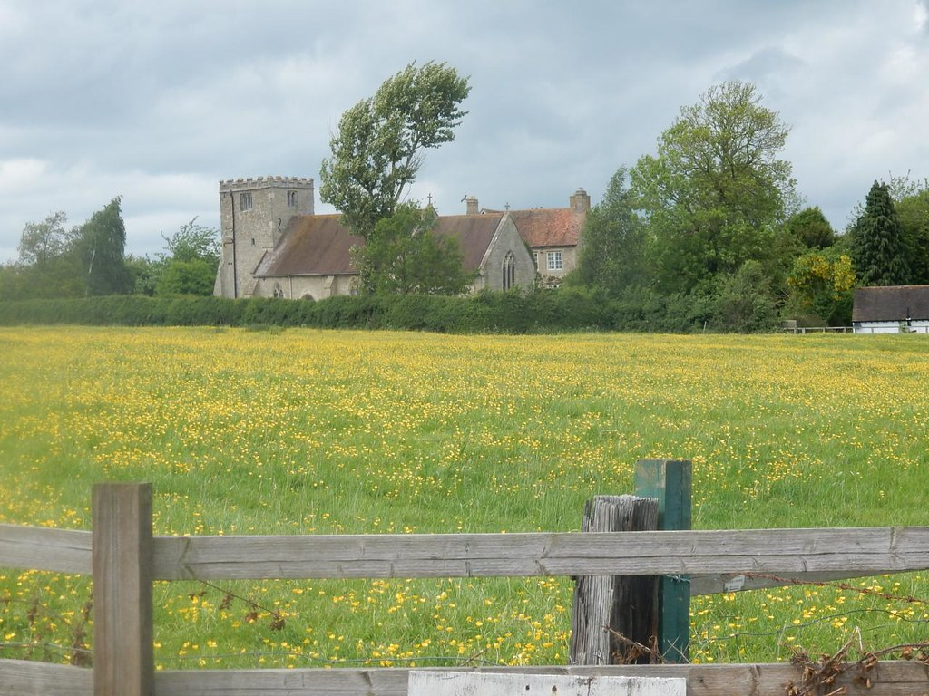 buttercups Mary Magdalene church, Shabbington. Thame Circular