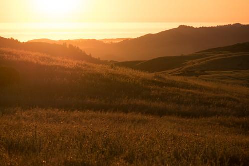 redwoodcity california unitedstates us