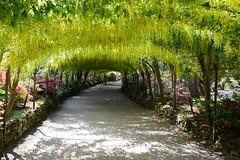 Bodnant Garden, Wales