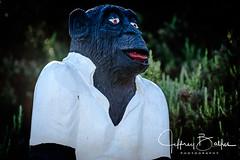 2017 Corral de Tierra Golf Album