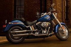 Harley-Davidson 1690 SOFTAIL FAT BOY FLSTF 2014 - 6