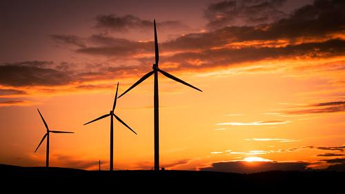 Springfield Wisconsin Windmills
