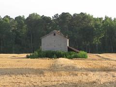 Buckhorn Road Barn