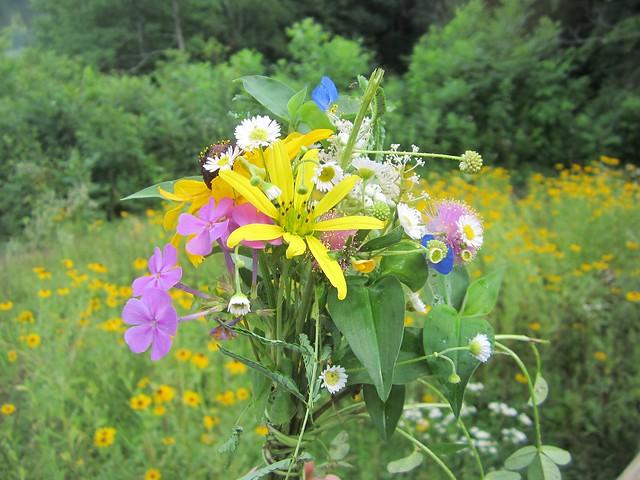 Wildflower Boquet, Canon POWERSHOT ELPH 100 HS