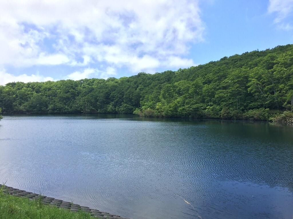 茶屋池ハイキング