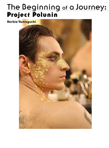 『The Beginning of a Journey: Project Polunin』 ©ハービー・山口