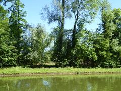 RNR de l'Escaut Rivière (29)