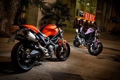 Ducati 696 MONSTER 2008 - 53