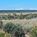 High Desert Bandlands