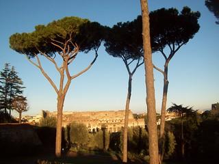 Foro Romano. Roma (Italia)