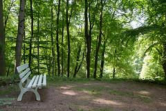 Schloß und Park Altenstein bei Bad Liebenstein/Thüringen
