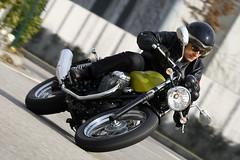 Moto-Guzzi V7 750 Cafe Classic 2010 - 44