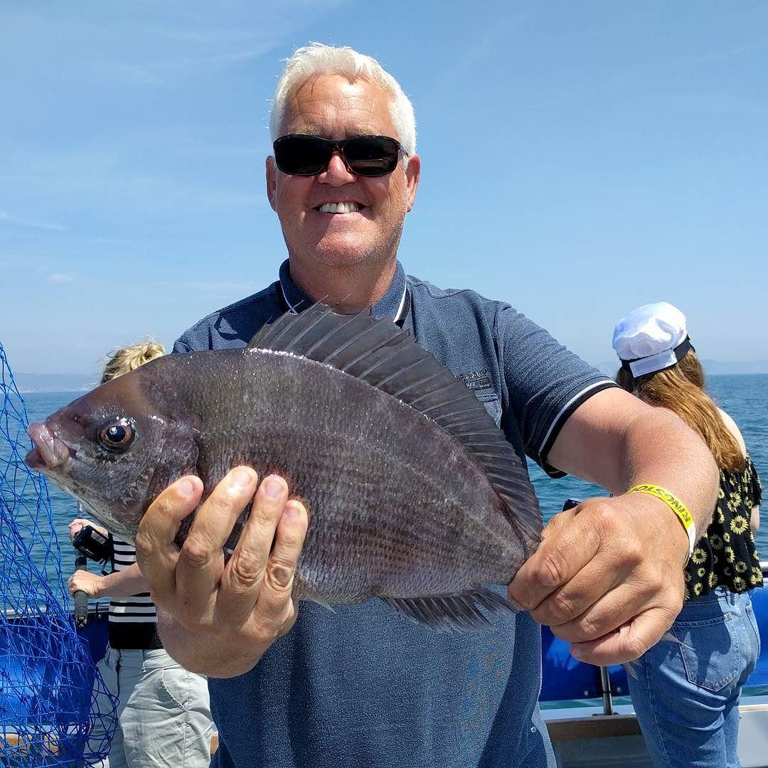 3lb14oz Black Bream #amarisaweymouth #fishing #blackbream #weymouth