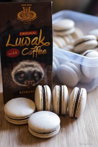 Kopi Luwak macarons