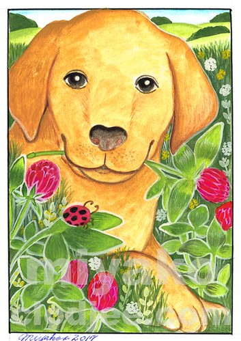 Dog with a Ladybug and Clovers