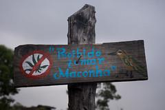 Proibido Cannabis