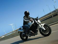 Ducati 696 MONSTER 2008 - 50