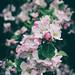 20.05.17 by Kirby_Wilson