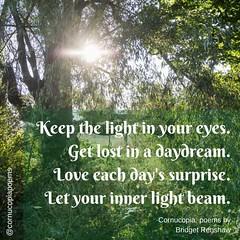 Shine BRIGHT  (A quote from Cornucopia, poems by Bridget Renshaw)