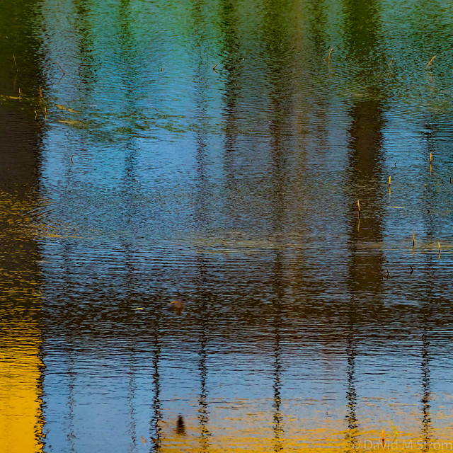 Optum Reflections