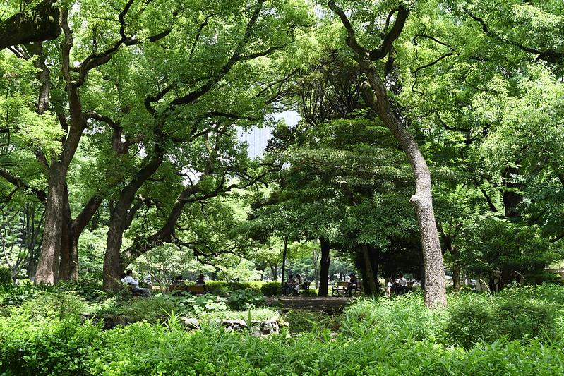 D7500で撮影した日比谷公園