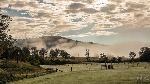 Fog Clearing